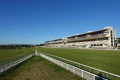 Pelouses de l'hippodrome d'Auteuil @ Paris (*_*) Tags: park city morning summer horse paris france europe sunday july sunny racing parc hippodrome 2016 auteuil