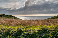 Soledad (ccc.39) Tags: asturias gozn cantbrico podes soledad costa naturaleza hierba mar nubes rayos tranquilidad seascape