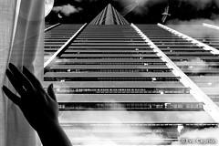 Paisaje onrico en blanco y negro (fotomontaje) - Dreamscape in black and white (photomontage) - (Eva Ceprin) Tags: blancoynegro blackandwhite fotomontaje photomontage sueos dreams imaginacin imagination dreamscape luna moon pirmide pyramid gaviota seagull nubes clouds mano hand cortina curtain noche night perspectiva perspective nikond3100 tamron18270mmf3563diiivcpzd evaceprin