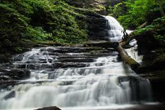 Log In The Falls (Northern Wolf Photography) Tags: 17mm em5 glen landscape leaves olympus ricketts statepark waterfalls benton pennsylvania unitedstates us