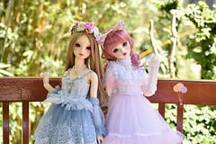 DSC_0102 copy (Pii_kun) Tags: dolls bal bjd balljointeddoll asianballjointeddoll volksdoll volksbjd portrait toy garden dainty girls beauty