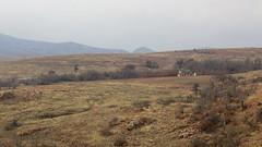 (El Stevo13) Tags: house mountains cabin wildlife boulder cobblestone national granite homestead wichita pioneer refuge