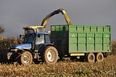Krone Big X Forage Harvester filling a Broughan Engineering Mega Hi-Speed Silage Trailer drawn by a New Holland TM155 Tractor (Shane Casey CK25) Tags: county new autumn winter tractor holland grass work krone cow big corn traktor cattle cows cut farm cork farming working harvest engineering nh x crop cutting crops feed farmer trailer agriculture drawn silage contractor maize collect harvester filling collecting tracteur trator mega hispeed forage fodder trekker cnh agri mitchelstown tillage ciągnik traktori tm155 broughan harvest2014