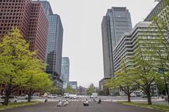 IMG_1623 (overseb) Tags: japan tokyo kyoto hiroshima sakura osaka