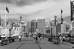20141031-11-Pyrmont Bridge.jpg (Roger T Wong) Tags: street city summer people blackandwhite bw monochrome candid sydney australia nsw newsouthwales darlingharbour cbd 2014 pyrmontbridge sonyalpha7 sonya7 rogertwong sonyfe2870mmf3556oss sonyilce7 sony2870