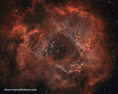 ROSETTE (Shaun Reynolds) Tags: rose stars skies space galaxy nebula nightview universe rosette nationalgeographic