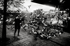 (archangelse) Tags: woman mood sweden stockholm pigeon dove streetphotography documentary reportage