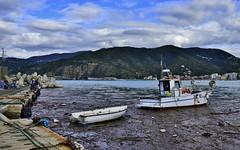save the sea !!! (miriam ulivi) Tags: sea people pier mare harbour liguria porto molo sestrilevante nikond3200 fisherboats pescherecci spazzaturagalleggiante rubbishfloating miriamulivi