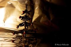 Merry Christmas and Happy New Year! ;-) (Mario Pellerito) Tags: christmas tree canon happy year ixus merry natale 255hs