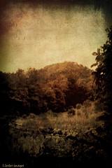 autumn in the mountains... (l.lester272) Tags: camera original postprocessed texture film vintage landscape image scene images scanned anutumn llester