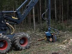 Pause dauert an (bratispixl) Tags: germany oberbayern chiemgau traunreut forstarbeit holzfllung stadtrundweg harvesterpause bratispixl belichtungsproben