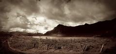 Samoan Highlands
