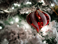 Merry Christmas! (trustypics) Tags: christmas light snow tree bulb bokeh decoration merrychristmas