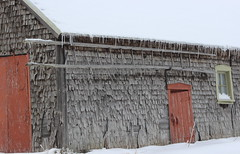 The Old Shed in Winter (pegase1972) Tags: winter snow canada quebec hiver qubec neige qc montrgie beloeil monteregie