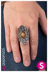 1218_ring-brownkit1amay-box05