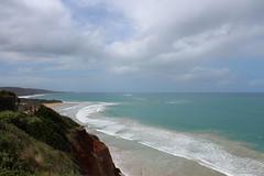 Kste bei Anglesea (Spiranthes2013) Tags: sea landscape coast meer australia victoria judith australien landschaft kste becker viktoria 2014 anglesea