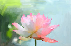 Lotus Flower Paintings - Image Based - Akvis Oil Paint Filter  -  DD0A5427-ls5-1000 (Bahman Farzad) Tags: china flower wall painting cambodia paint image lotus drawing paintings drawings vietnam filter oil budha decor based walldecor lotusflower walldecorations floraldecorations interiordecorations akvis imagebased lotusflowerpainting lotusflowerpaintings lotusfloweroilpaintings lotusfloweroilpainting
