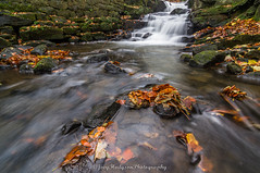 Autumn st Lumsdale (*LOST EVERYTHING ON HERE.. HAVING TO RE-UPLOAD*) Tags: autumn england water landscape leaf rocks unitedkingdom derbyshire sony falls waterfalls matlock lumsdale joeyhodgsonphotography