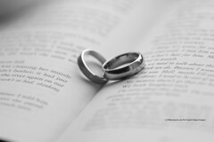 We Laughed together (The Original Happy Snapper) Tags: wedding blackandwhite black macro love monochrome field writing book text indoor depthoffield whitebackground rings depth happyeverafter welaughedtogether