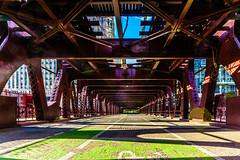 greenpath (AndrewCossaStrong) Tags: city flowers alley skateboarding skater redlight