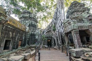 angkor - cambodge 2016 100
