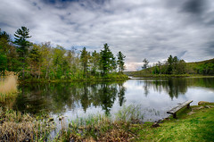 Inviting (desouto) Tags: trees plants lake nature water pond hdr