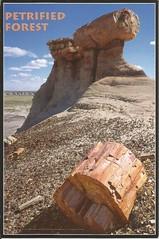 NA May '16 RR - from RobinP (amanDALIZbeth) Tags: arizona nationalpark petrifiedforestnationalpark robinp