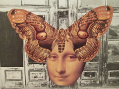 Mona Moth (joannmuench) Tags: portrait collage vintage antique mixedmedia surrealism monalisa davinci moth surreal retro fantasy collageart photomontage dada surrealistic dadaism cutandpaste artcollage renaissancepainting desertloca joannmuench playingwithmasterworks