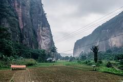 23_20160315-171455-DSC05830 (trueforever) Tags: indonesia ibis bukittinggi padang novotel pagaruyung minangkabau jamgadang lembahharau westsumatera batusangkar tanahdatar ngaraisianok padangpanjang pacujawi padangpariaman