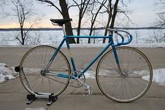 IMG_2510 (DMichaelM) Tags: bicycle vintage track pisa schwinn brooks paramount campagnolo