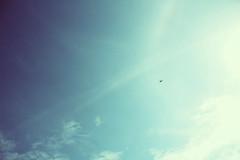 (Sofia Podest) Tags: sky skyline clouds 35mm analog film sun blue cielo nuvole primavera landscape dreamscape sofia podest zobeide dreaming sunshine spring plane