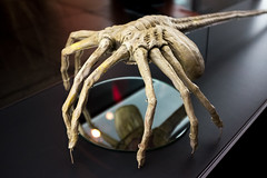 Facehugger (flippers) Tags: seattle usa film museum america movie us washington unitedstates alien aliens scifi horror popculture prop facehugger empmuseum