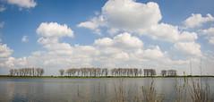 treeline (stevefge (away travelling)) Tags: sky panorama nature water netherlands nederland natuur bisonbaai nederlandvandaag reflectyourworld