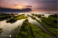 Spring in Barrika (Caramad) Tags: longexposure sunset sea seascape sol landscape mar agua rocks playa puestadesol olas bizkaia rocas barrika marcantbrico