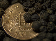 Hot Money! (Saul_Good) Tags: black pepper one penny piece pence corns macromondays paultyronethomas smallerthanacoin