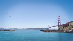 Gull Bridge (Garden State Hiker) Tags: sanfrancisco california nature northerncalifornia outdoors goldengatebridge marincounty sanfranciscobay sausalito summeroutdoors