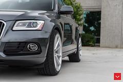 Audi Q5 - VFS-1 - Silver  -  Vossen Wheels 2016 - 1014 (VossenWheels) Tags: silver tag audi vfs q5 audiq5 vfs1 tagmotorsports audisq5aftermarketwheels audiaftermarketwheels audisq5wheels vossenwheels2016 audiwheelsvfsseries q5aftermarketwheels q5wheels sq5aftermarketwheels sq5wheels