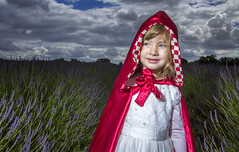 Little Red Riding Hood (Fabricio Photography) Tags: red little lavender riding littleredridinghood hood filed