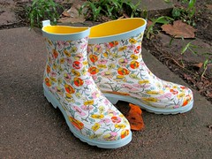 Rain Boots (dog.happy.art) Tags: floral shoes colorful boots waterproof stretchy rainboots gardenboots