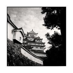 the last castle  himeji  koyasan, kansai  2015 (lem's) Tags: castle japan last rolleiflex himeji chateau kansai japon planar dernier