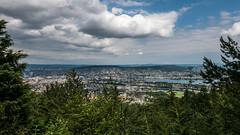 View to Zurich / Linderweg ZH (andwest) Tags: summer mountain alps nature juni landscape schweiz switzerland suisse hiking sommer zurich natur zrich helvetia svizzera landschaft uetliberg wandern zri zurigo svizra turitg hikr denzlerweg lx100 juni2016 panasoniclumixdmclx100 lumixlx100 oberkolbenhof linderweg