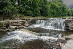 Aysgarth Falls (daviddent1) Tags: landscape yorkshire aysgarthfalls waterfall
