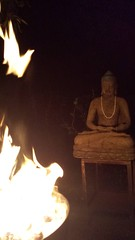 White bird of peace, fire of Sur Offering, Tibetan Buddhist practice to benefit all Sentient beings, statue of Lord Buddha, fragrant fire, Broadview, Seattle, Washington, USA (Wonderlane) Tags: 20161006192517 whitebirdofpeace fireofsuroffering statueoflordbuddha fragrantfire broadview seattle washington usa fire sur offering tibetanbuddhistpracticetobenefitallsentientbeings