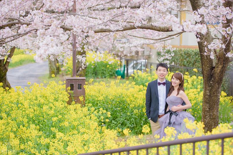 海外婚紗,京都櫻花婚紗