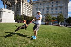 DSC06171 (liverpix) Tags: cleo dog performing anthonywalsh photowalk 500px liverpool pierhead liverbuilding ballerina ballet