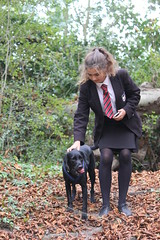Scarpa and Fizzy (alasdair massie) Tags: cambridge fizzy dog labradorpointercross walk labrador black scarpa vizler harltonclunchpit