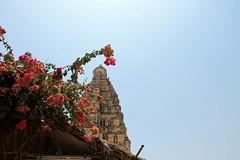 India (marlene_eichhorn) Tags: india hampi temple flower lisbon miradouro view tea teaplantage munnar morning foggy colour silence meditation om