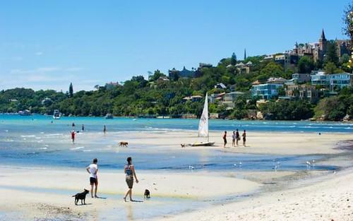 6 Salisbury Rd, Rose Bay NSW 2029