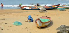 Beach at Mahabalipuram, India (josepsalabarbany) Tags: mango tropical species streetlife victorian jewel rajput fort jodhpur thanjavur jaipur gopura church stupa mandapa shikhara amalaka kalasha parvati siva delhijodhpur oldcity apsara khajuraho konark ellora chennai gujarat mumbai goa mysore karnataka bangalore punjab amritsar jainism ranakpur kobalam uttarpradesh tajmahal fatehpursikri ghat ganges benares varanasi orchha maharashtra god ganesh vimana temple bengal tyger elephant curry journey travel sculpture sea rajasthan kerala delhi hindu moguls people sun architecture art asia india beach rathas kanchipuram nikond7000 josepsalabarbany