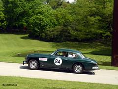 Jensen C-V8 MkI (BenGPhotos) Tags: park green car sport race crystal palace racing exotic british sprint luxury rare coupe v8 jensen cv8 mki jensencv8 motorsportatthepalace 2013motorsport fni404